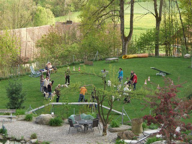 33Hundeschule_Bergfried-114