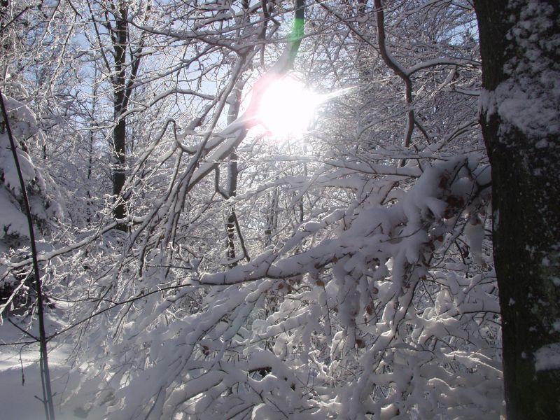 27Galerie_Winter-246
