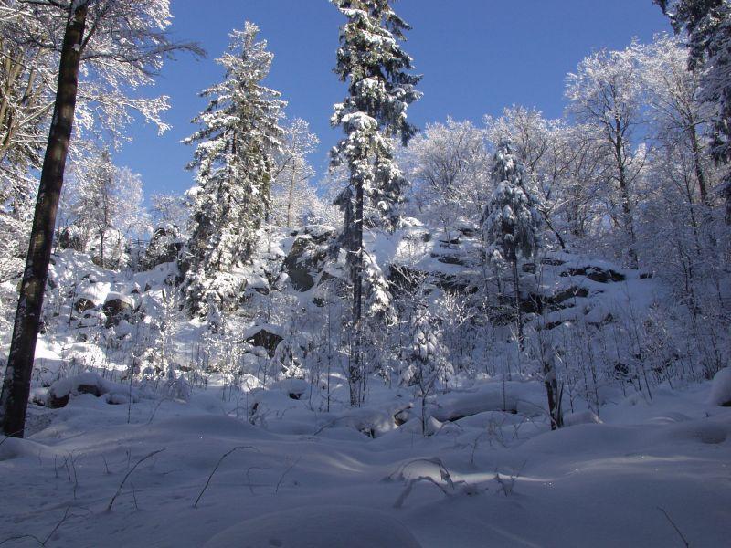 29Galerie_Winter-248